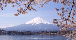 Kota Paling Indah dan Menarik Dijadikan Destinasi Dalam Paket Wisata Jepang