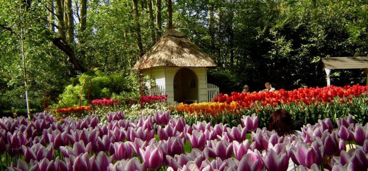 Mengunjungi Wisata Belanda dengan Destinasi Paling Populer Seluruh Dunia