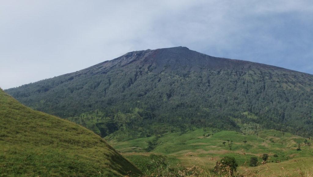 3_Lombok_savanna_Mt._Rinjani_5