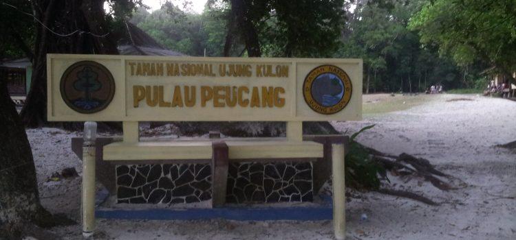 Liburan dengan Wisata Paling Mempesona di Taman Wisata Ujung Kulon