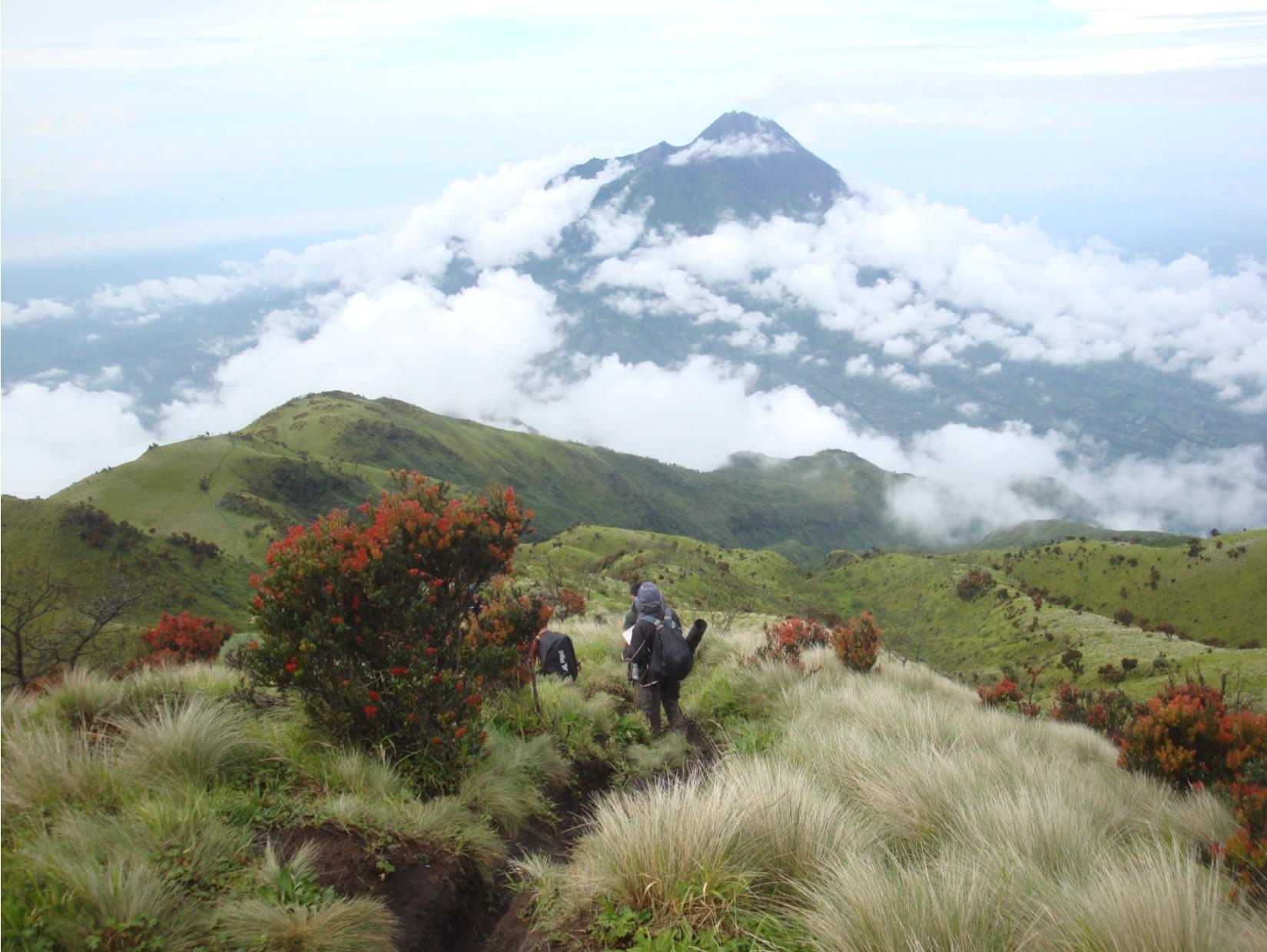 Mari Kenali Gunung Argopuro