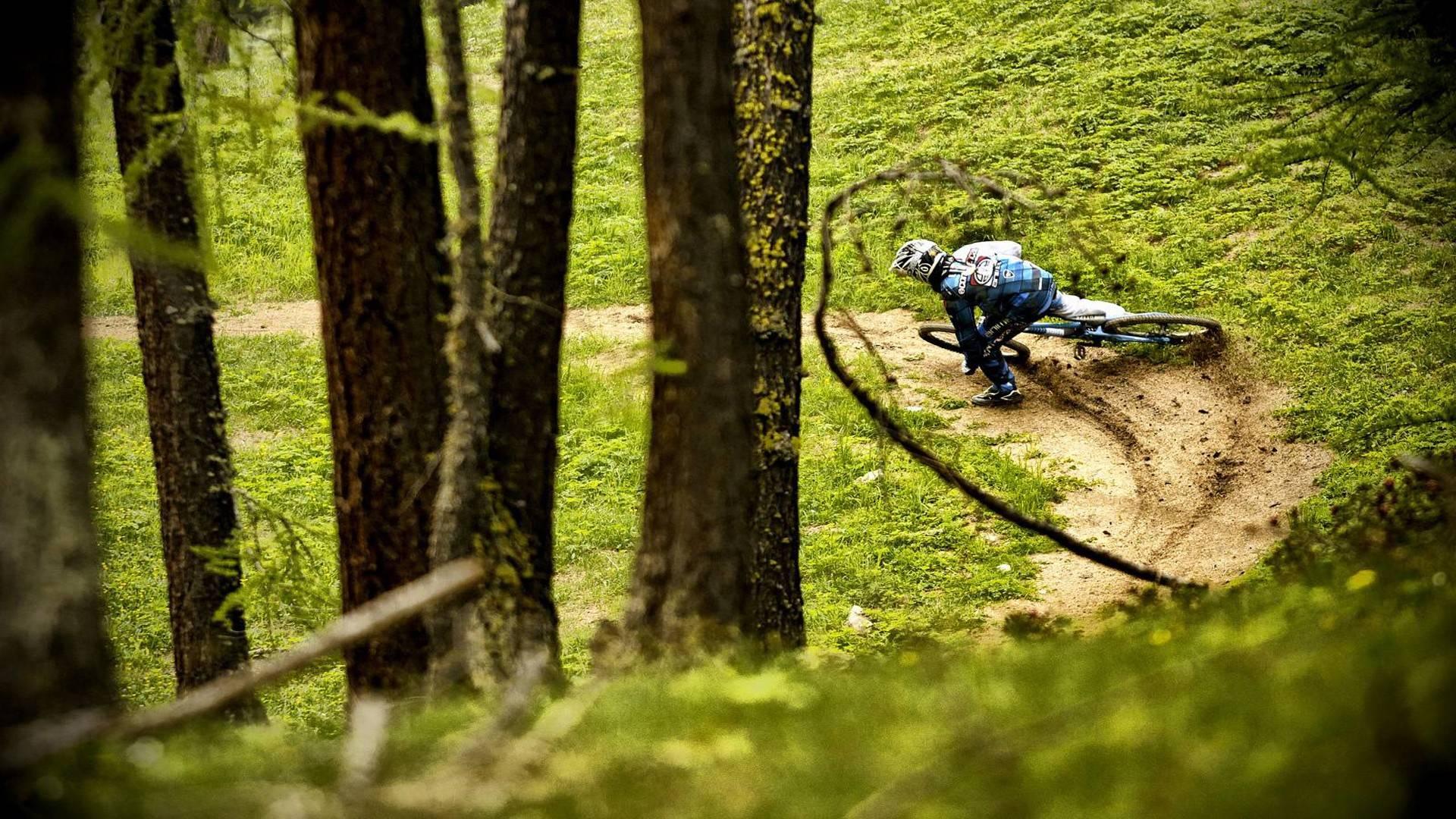 Bertualang Dengan Sepeda Gunung